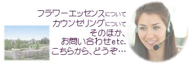 385-130_FE-B002_x03_ぼ02