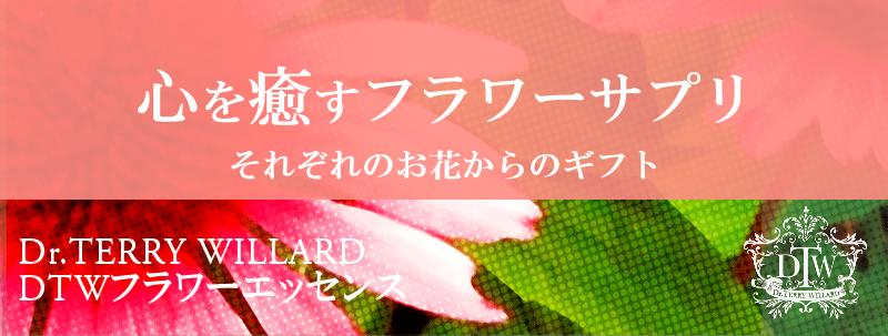 メンタルヘルスケアのフラワーエッセンス東京(池袋)/シングル