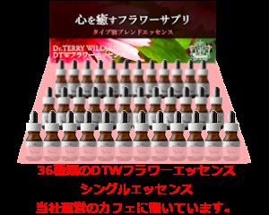 フラワーエッセンスS36本 ピラミッド_B002